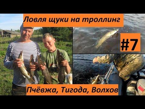 рыбалка на тигоде в киришах
