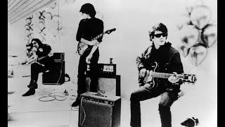 Guess I'm Falling In Love - The Velvet Underground (Music Video)