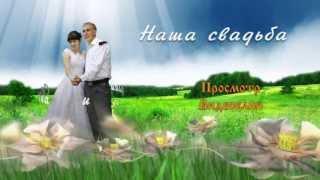 Главное меню DVD диска - Свадьба Николая и Светланы