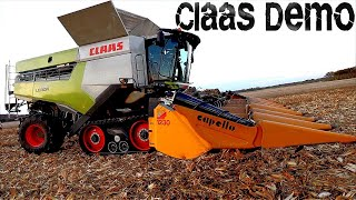 Corn Harvest with a NEW CLAAS LEXION 7500 | Day 25
