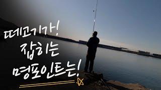 [숭어꽃낚시(봉낚시)] 진해 최고의  명포인트!!!  …