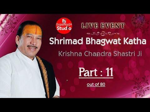 ThakurJi Krishna Chandra Sastri || Part 11 - Mayapuris 2011