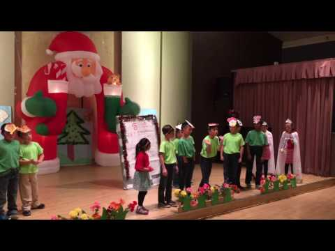 Green Chinese school shows