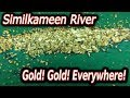 Fine gold EVERYWHERE! on the Similkameen river.