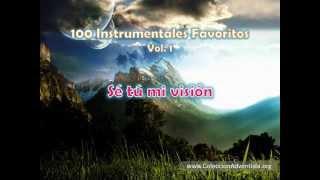 100 Instrumentales Favoritos vol. 1 - 015 Se tu mi vision