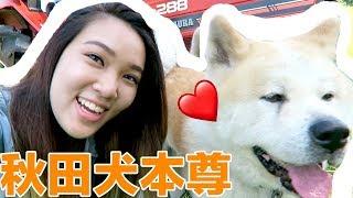 訂閱我→ https://goo.gl/D6X3vB. ▷  你看過這些影片了嗎? 擁抱日本秋田...