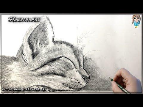 Как нарисовать котёнка карандашом 🐱👤