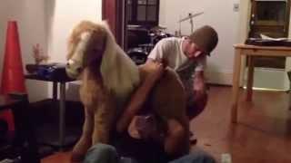 Video Fucking pony download MP3, 3GP, MP4, WEBM, AVI, FLV September 2018