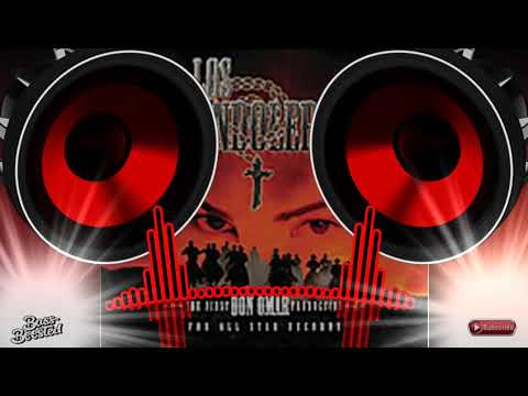 Los Bandoleros - Don Omar Ft  Tego Calderón  BASS BOOSTED