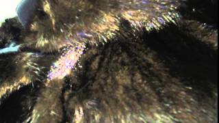 Как отличить натуральный мех от подделки норковая шуба полушубок(новая коллекция пальто - от $90 Новая коллекция шубок - самые дорогие - до $1000. Друзья, обновление ассортимента..., 2015-09-21T19:56:24.000Z)