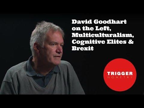 David Goodhart on the Left, Multiculturalism, Cognitive Elites & Brexit