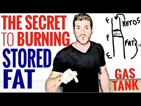 the-secret-to-burning-stored-body-fat-|-gas-tank-analogy