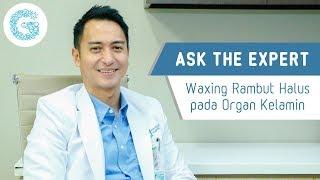 Waxing rambut halus pada organ kelamin - Dr. Armansjah Dara SpKK, M.Kes