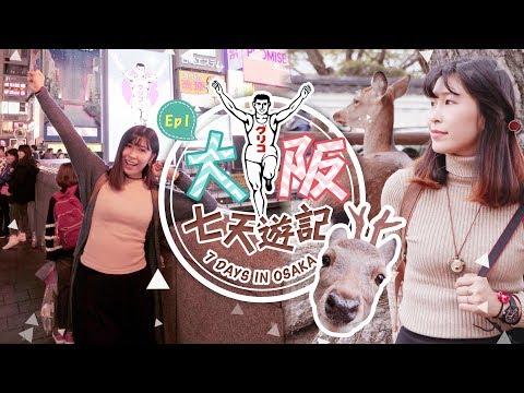 大阪七天遊記 7 Days
