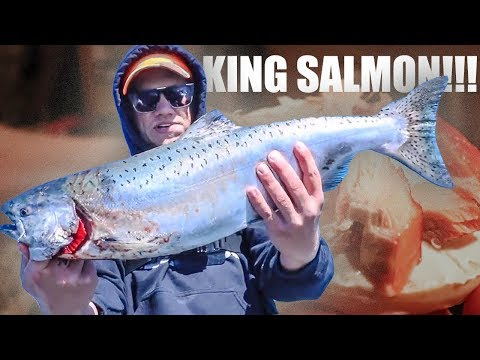 Alaskan King Salmon CATCH and COOK Surprise!!!