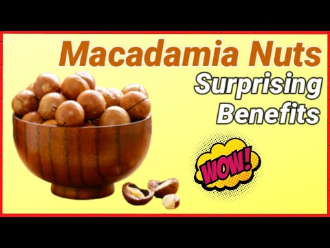 Macadamia Nuts Nutrition Facts & Health Benefits (Unique Benefits)