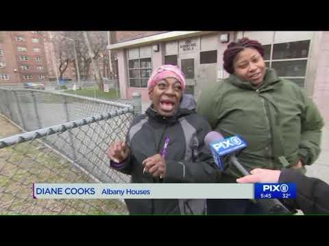 Rats Running Rampant At Brooklyn Housing Project