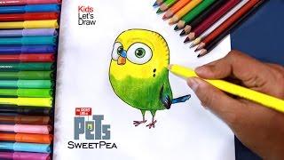 Cómo dibujar a ALITAS (La Vida Secreta de tus Mascotas) | Drawing SweetPea The Secret Life of Pets