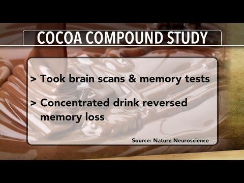 Flavonols in cocoa may boost brain function, study shows