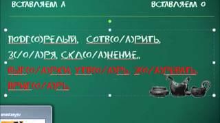 Урок русского языка по скайпу  http://a-distanceschool.ru/