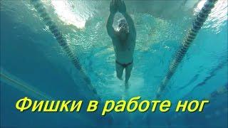 Техника работы ног кролем/ Фишки в работе ног/ КАК НАУЧИТЬСЯ ПРАВИЛЬНО ПЛАВАТЬ/ How to learn to swim
