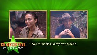 Dschungelcamp 2020   Wer muss an Tag 12 das Camp verlassen?
