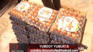 Yumdoy Yumurta
