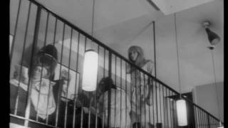 Repulsion 1965 Trailer