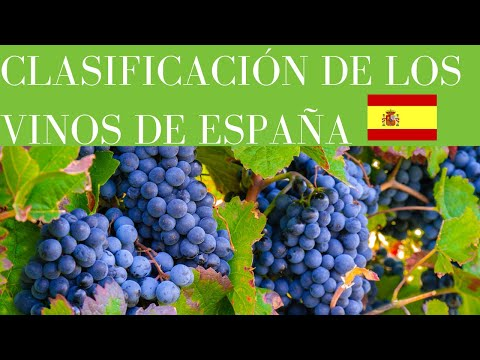👍-¡¡clasificaciÓn-de-los-vinos-de-espaÑa!!🍷[explicado✅]▶[completo]▶[curso-de-vinos🍷]