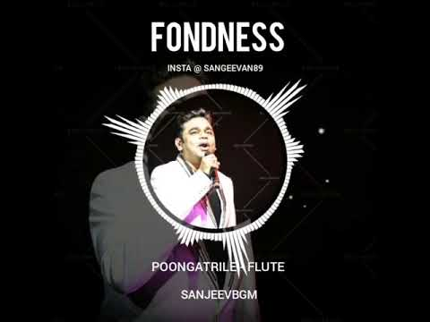 Poongatrile - Flute BGM | Love | King of BGM