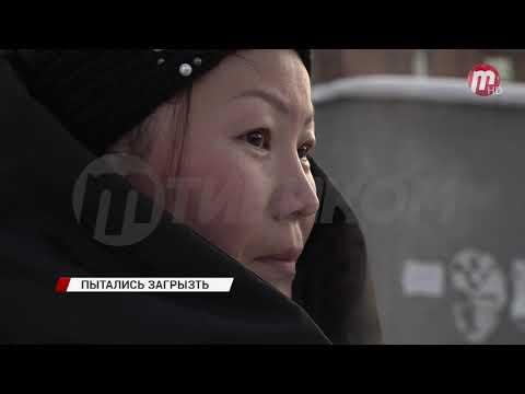 В Улан-Удэ стая бездомных собак напала на 7-летнего ребенка