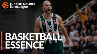 calathes had 12 assists in a panathinaikos thrilling win over baskonia