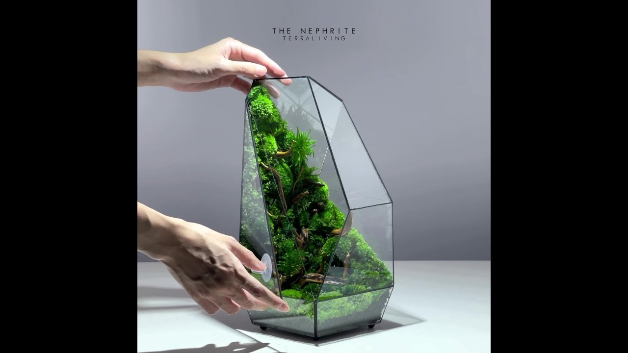 """The inner world of """"The Nephrite"""", a preserved moss geometric terrarium by TerraLiving"""