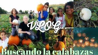 😍 Visita A La Union Corn Maze/ Vlog En Busca De Calabazas