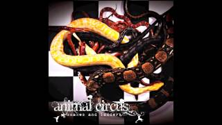 Animal Circus - Perfect Surface