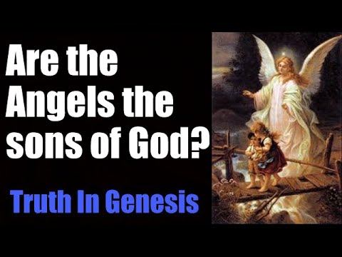 Are the Angels the sons of God?