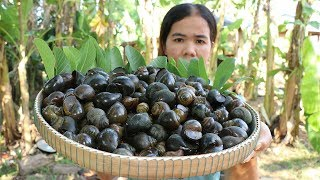 Awesome Cooking Fried Spicy Hot Snails Recipe -  Show Eating Snail Delicious -  Primitive Technology