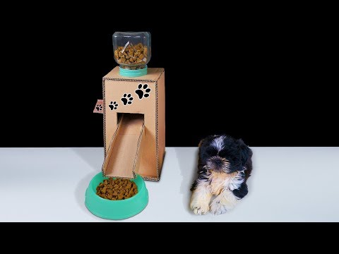 diy-puppy-dog-food-dispenser-from-cardboard-at-home