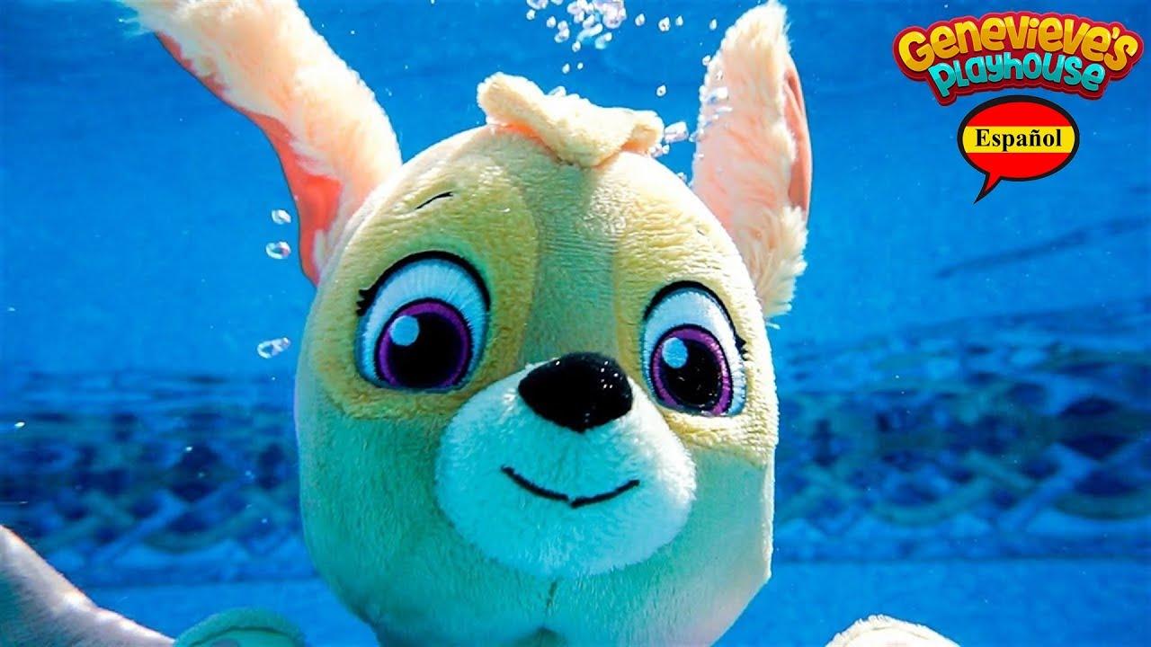 Paw Patrol ¡Ve a nadar en un día caluroso y aprende sobre el dinero y la responsabilidad!