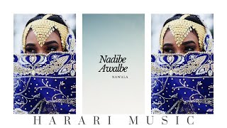 Nawala - Nadibe Awalbe │Ethiopian Harari Music (Audio)