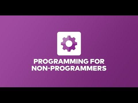 Programming Basics for Non-Programmers