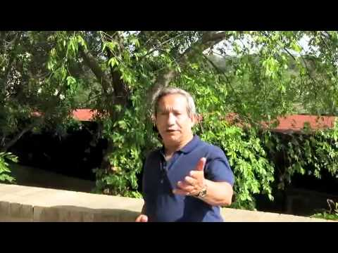 Interview of Dr Pablo Martinez