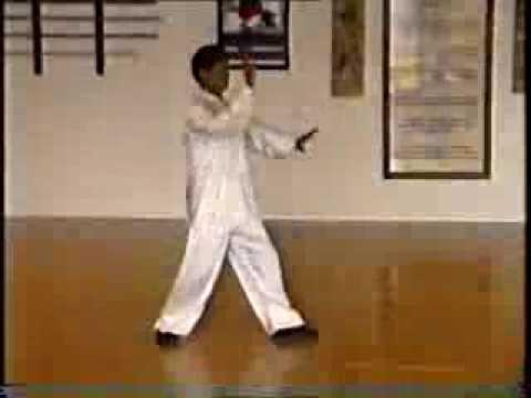 Taikiken Seminar 1995 - Tanshu of Master Cui Rui Bin
