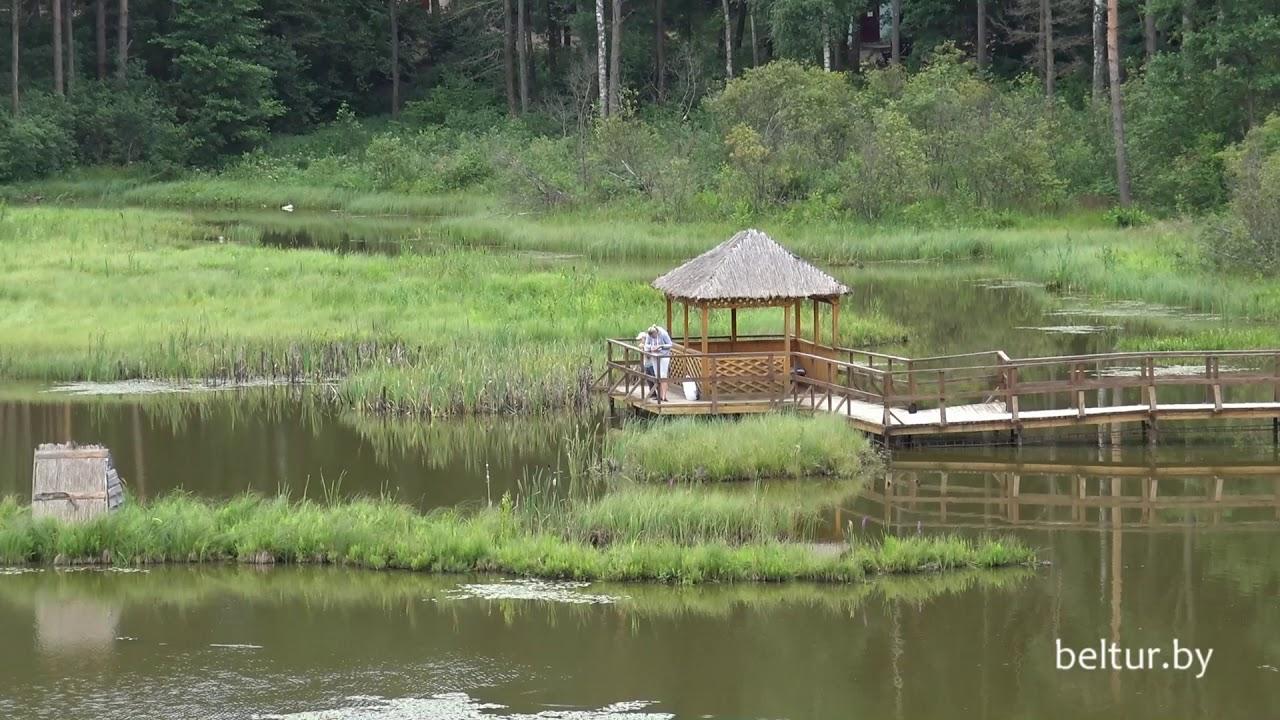 отдых и рыбалка в белоруссии в витебской области