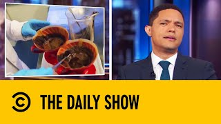 The Coffee That's Fighting Climate Change | The Daily Show With Trevor Noah