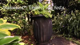 Wie Erstellen Sie Einen Schönen Schatten im Garten mit P Allen Smith