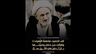 أمير المؤمنين (عليه السلام) بين السيف و الصبر  |  المرجع الكبير الشيخ محمد تقي بهجت