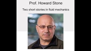NSCS Online Seminar - Prof. Howard Stone