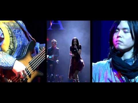 HAYA BAND Tara(WORLD MUSIC)