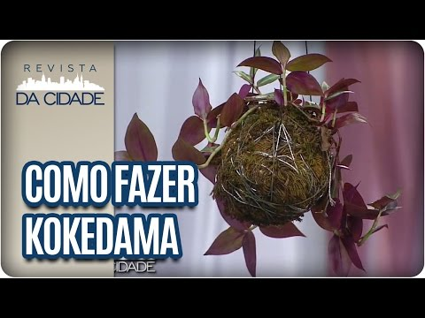 Modo de Fazer Kokedama: Bola de Musgo  - Revista da Cidade (13/01/17)